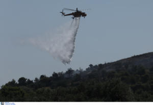 Φλώρινα: Κάηκαν 250 στρέμματα δάσους