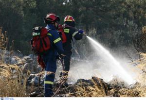 Φωτιές… παντού παρά τις προειδοποιήσεις! Κάηκαν Μαραθώνας, Ελαφόνησος, Ζούμπερι