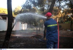 Πυροσβεστική: 59 φωτιές σε 24 ώρες!