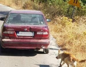 Βρέθηκε το αυτοκίνητο που είχαν δέσει σκύλο και τον έσερναν – Άφαντος ο οδηγός