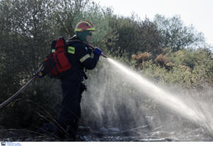"""""""Φουντώνει"""" η φωτιά στη Θάσο – Ενισχύεται η δύναμη της Πυροσβεστικής"""