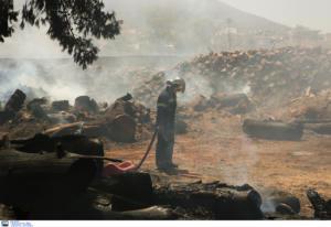 """Στο """"κόκκινο"""" και σήμερα Αττική, Στερεά και Πελοπόννησος! Σε ποιες περιφέρειες υπάρχει πολύ υψηλός κίνδυνος πυρκαγιάς"""