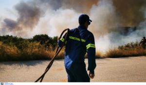 Πολιτική Προστασία: Μεγάλος κίνδυνος πυρκαγιάς και τη Δευτέρα