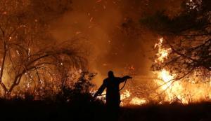 Φωτιά Εύβοια: Μαίνεται η μάχη! Αντιπυρική ζώνη περιμετρικά του χωριού Πλατάνα!