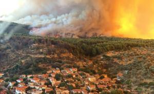 Φωτιά Εύβοια: Σε παράταξη μάχης οι πυροσβέστες! 5 χιλιόμετρα το ενεργό μέτωπο της φωτιάς!