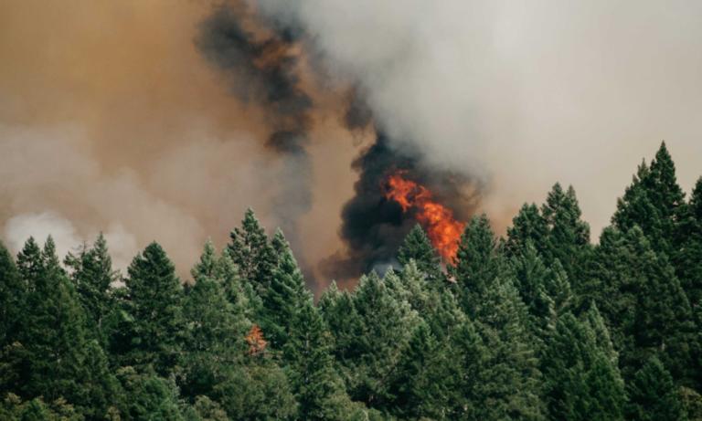 Φωτιά στο Λευκοχώρι Γαστούνης στην Ηλεία