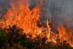 """Καιρός: Συναγερμός στην Πολιτική Προστασία: Στο """"κόκκινο"""" ο κίνδυνος για φωτιές!"""