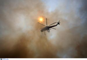 """Φωτιά Εύβοια: """"Εγκλώβισαν"""" την πύρινη λαίλαπα σε μια χαράδρα!"""