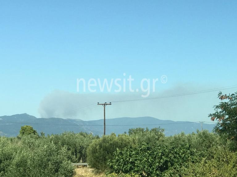 Εύβοια: Φωτιά στην Καστανιώτισσα Ιστιαίας