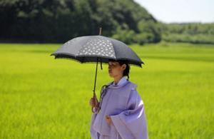 Τουλάχιστον 23 νεκροί από τον καύσωνα στην Ιαπωνία!