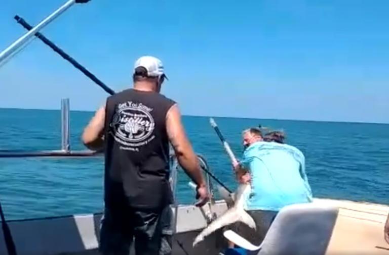 Καρχαρίας άρπαξε ψαρά πάνω στο σκάφος – Το βίντεο που κόβει την ανάσα