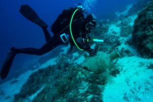 Σημαντικά ευρήματα στο βυθό της νήσου Λέβιθα [pics]