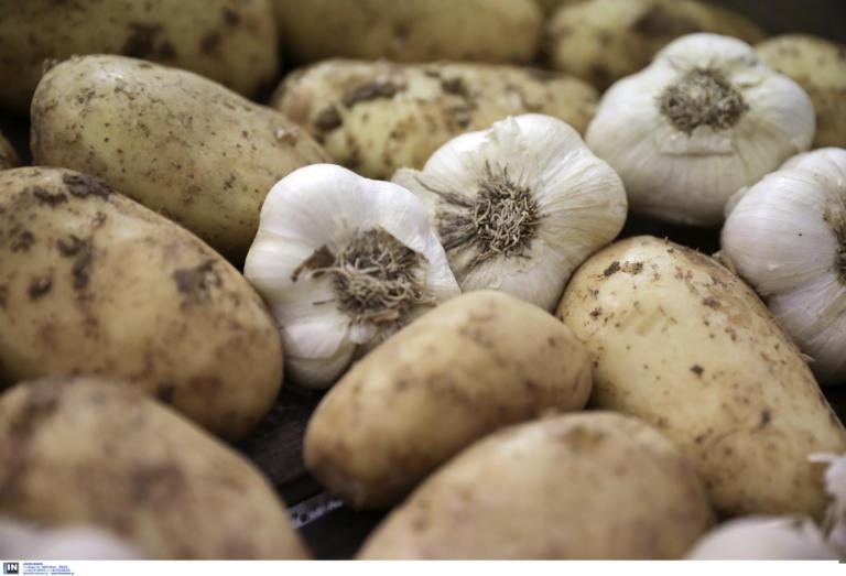 """Θεσπρωτία: Οι πατάτες που έκοβαν πεθερά και νύφη """"έκαψαν"""" τον ιδιοκτήτη – Το εξοντωτικό πρόστιμο των ελεγκτών – video"""