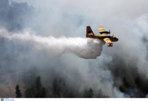 Φωτιά τώρα στους Δελφούς – Ρίψεις νερού από Petzetel