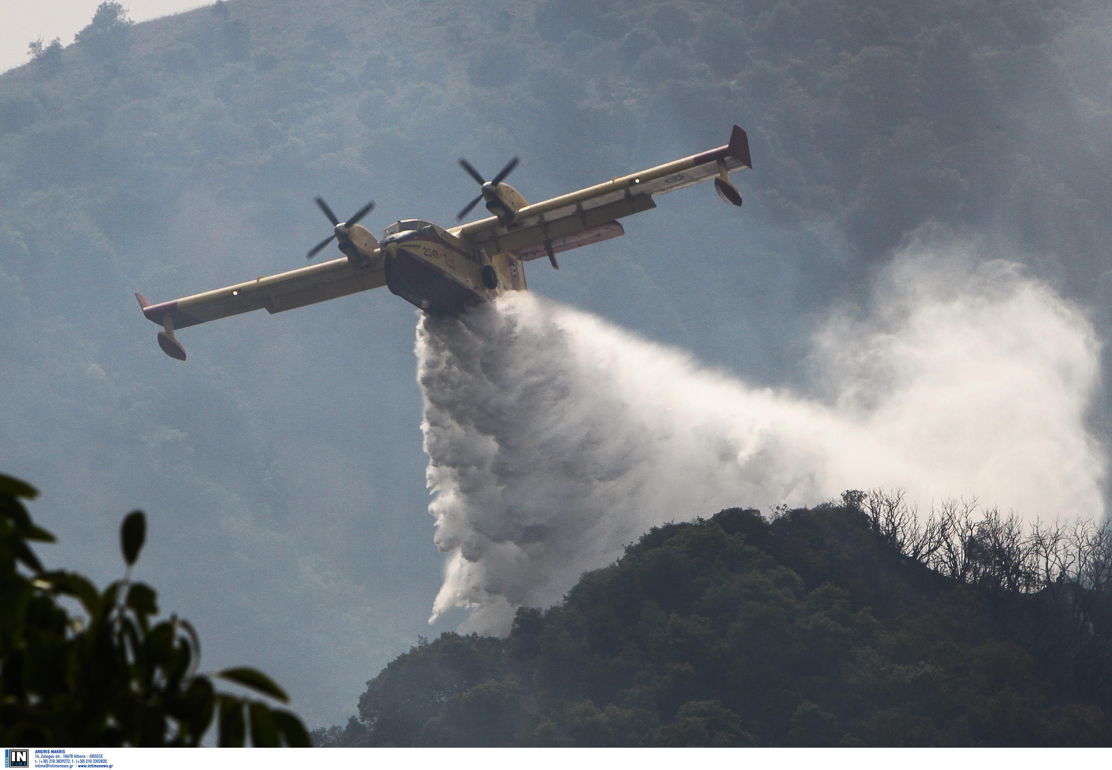 Φωτιά στα Τέμπη – Μεγάλη κινητοποίηση της Πυροσβεστικής