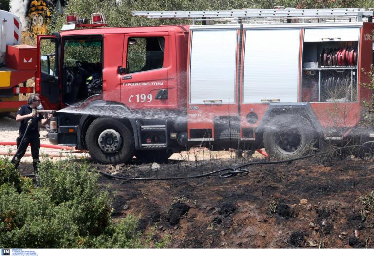 Θεσσαλονίκη: Απαγόρευση κυκλοφορίας σε δασικές περιοχές στη Χαλκιδική