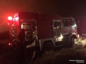 Μεγάλη φωτιά στα Μέγαρα – Ισχυρές δυνάμεις της Πυροσβεστικής