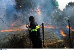 """Ρέθυμνο: Εμπρησμό """"βλέπει"""" η Πυροσβεστική για την φωτιά στο Αρολίθι"""
