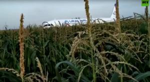 Ρωσία: Βραβεύουν τους πιλότους που προσγείωσαν το αεροσκάφος… στα καλαμπόκια!