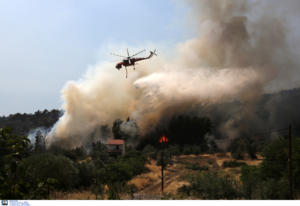 Πυρκαγιά στο Σούλι Θεσπρωτίας – Ενισχύονται οι δυνάμεις της Πυροσβεστικής