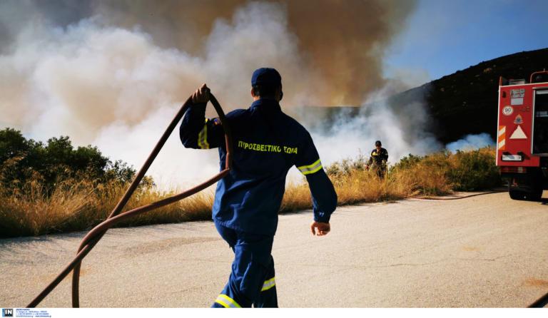 Φωτιά στα όρια του Σέιχ Σου! Συναγερμός στην Πυροσβεστική