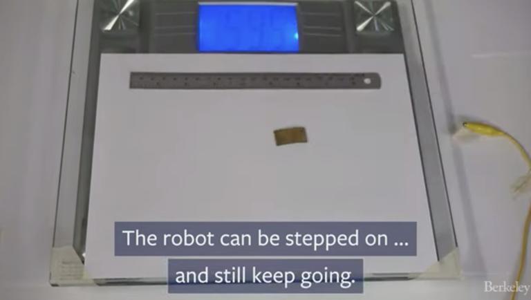 Δείτε το ρομπότ – κατσαρίδα που το πατάς και δεν παθαίνει τίποτα! [video]