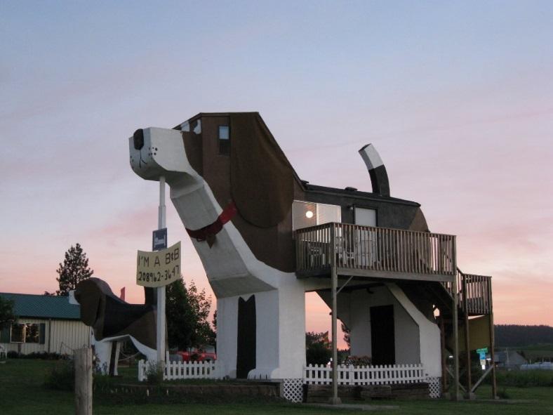 Μείνετε μέσα σε ένα γιγαντιαίο σκυλί! Video