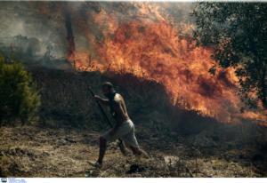 Φωτιά στον Βύρωνα! video, pics