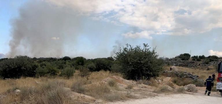 Φωτιά στην Ζωοδόχο Ιωαννίνων – Ισχυρές δυνάμεις της πυροσβεστικής στην περιοχή
