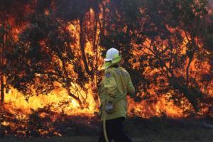 Αυστραλία: Μεγάλες δασικές πυρκαγιές στις Πολιτείες Κουίνσλαντ και Νέα Νότια Ουαλία