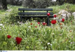 Κρήτη: Ρώσος τουρίστας βρέθηκε νεκρός σε παγκάκι!