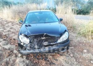Φθιώτιδα: Το αυτοκίνητο συγκρούστηκε με αγριογούρουνο και έγινε αγνώριστο – Γλίτωσε ο οδηγός του [pics]