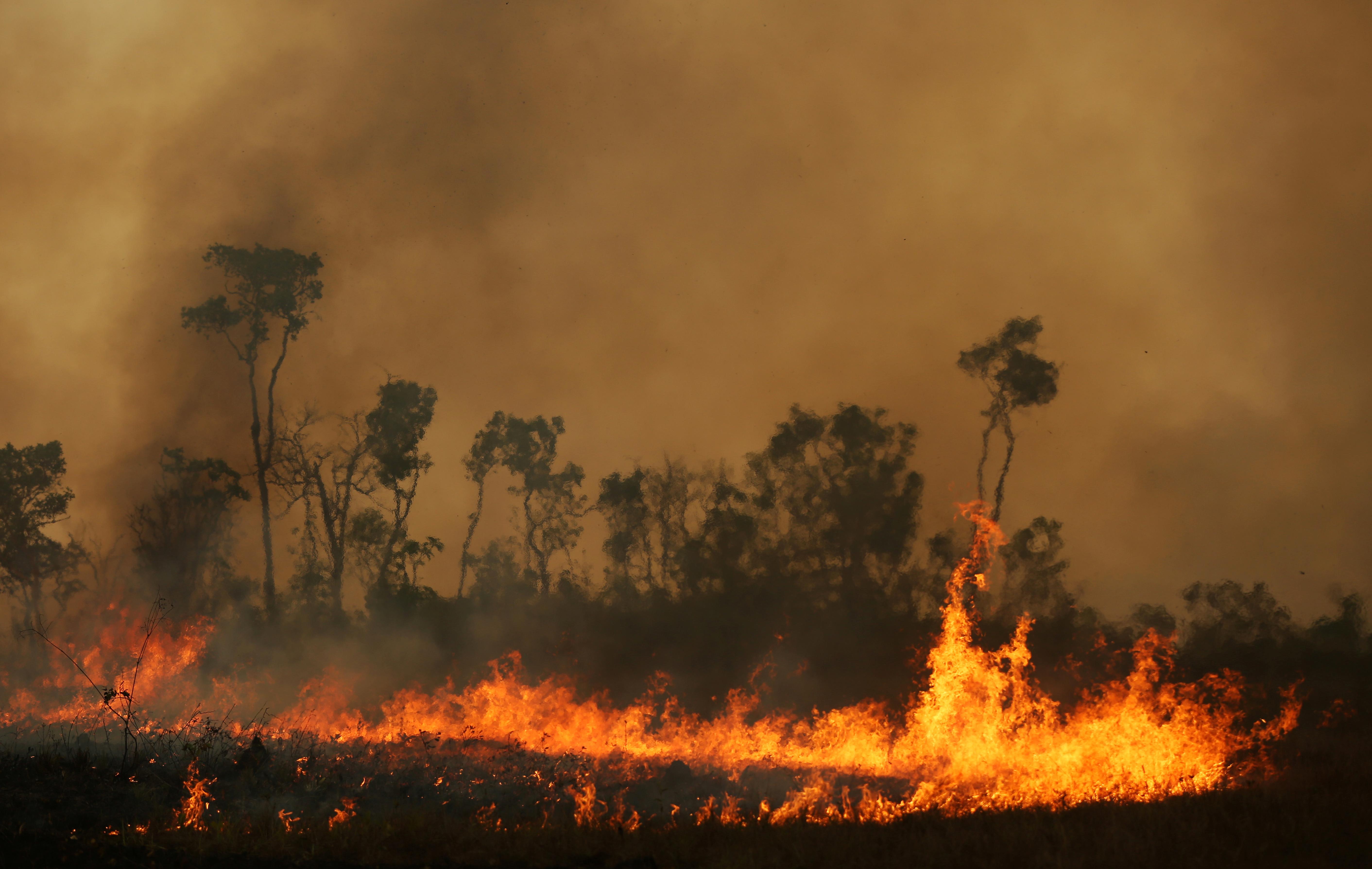 Ο Αμαζόνιος φλέγεται και πάλι – Ρεκόρ πυρκαγιών τον Ιούλιο