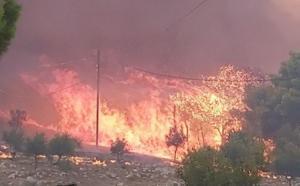 Φωτιά Ζάκυνθος: Πύρινη κόλαση και κραυγές αγωνίας – Εκκενώθηκαν χωριά μετά από αντιδράσεις – Νέες εικόνες [pics, video]