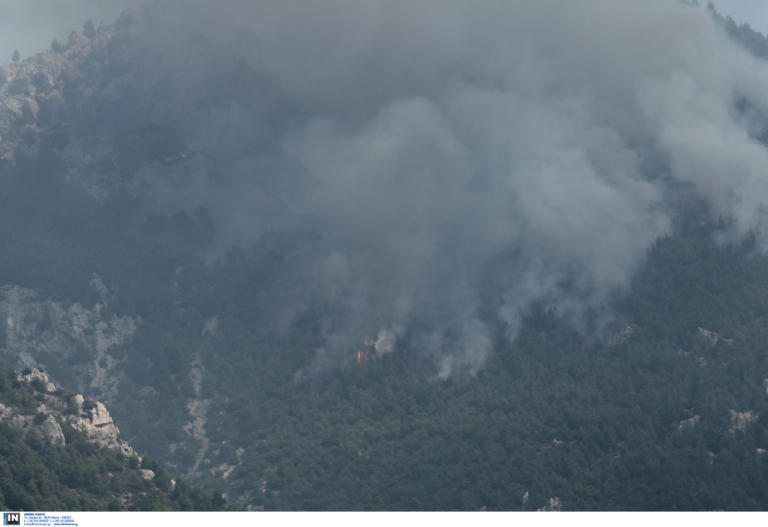 """Φωτιά στο Λουτράκι: Αυτές οι εικόνες πάνω από τα σπίτια τους – """"Ασφυξία"""" για τους κατοίκους – Μαίνεται η πυρκαγιά!"""