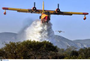 Φωτιά σε δασική έκταση στη δυτική Αχαΐα