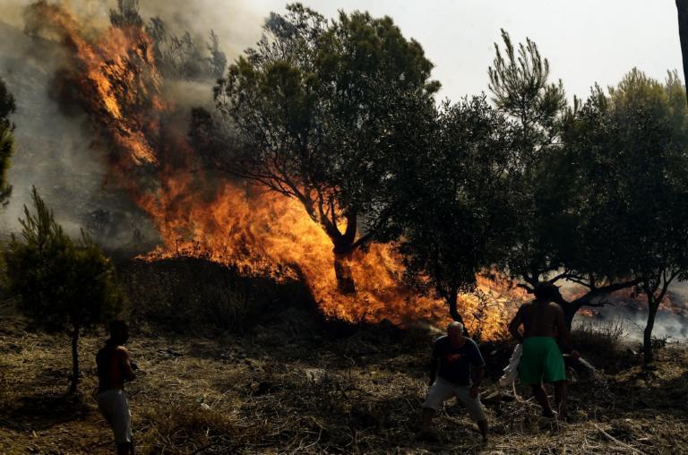 Φωτιά σε δασική έκταση στο Πανόραμα Θεσσαλονίκης