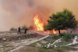 Φωτιά Ζάκυνθος: Οι φλόγες στις αυλές σπιτιών – Ανεξέλεγκτη η πυρκαγιά – Φόβος για τη νύχτα που έρχεται [pics, video]