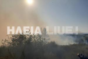 Ηλεία: Νέα φωτιά στην Ήλιδα – Καίει κοντά στην μονάδα επεξεργασίας στερεών αποβλήτων