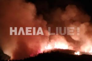 Μεγάλη φωτιά στην Ηλεία! [pics]