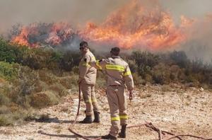 Ζάκυνθος: Η φωτιά κατευθύνεται και απειλεί το χωριό Κερί – Μάχη με το χρόνο από τους Πυροσβέστες – video