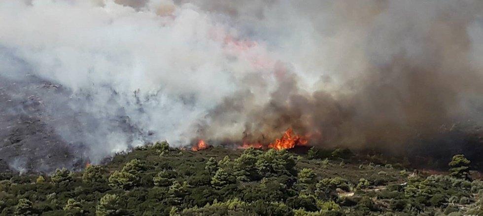 Φωτιά κοντά σε σπίτια στην Αργολίδα - Στην περιοχή πνέουν ισχυροί άνεμοι