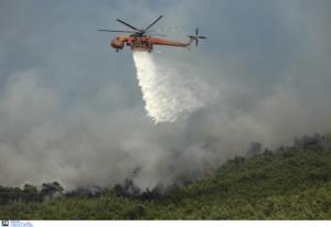 Πολεμούν τις φλόγες από γη και αέρα στη Ζάκυνθο – Σβήνει η φωτιά στο Λουτράκι