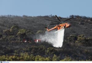 Φωτιά στη Νέα Μάκρη: Σε ύφεση αλλά παραμένει επικίνδυνη