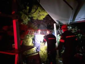 Πάτρα: Δέντρο έπεσε πάνω σε θαμώνες καφετέριας! video