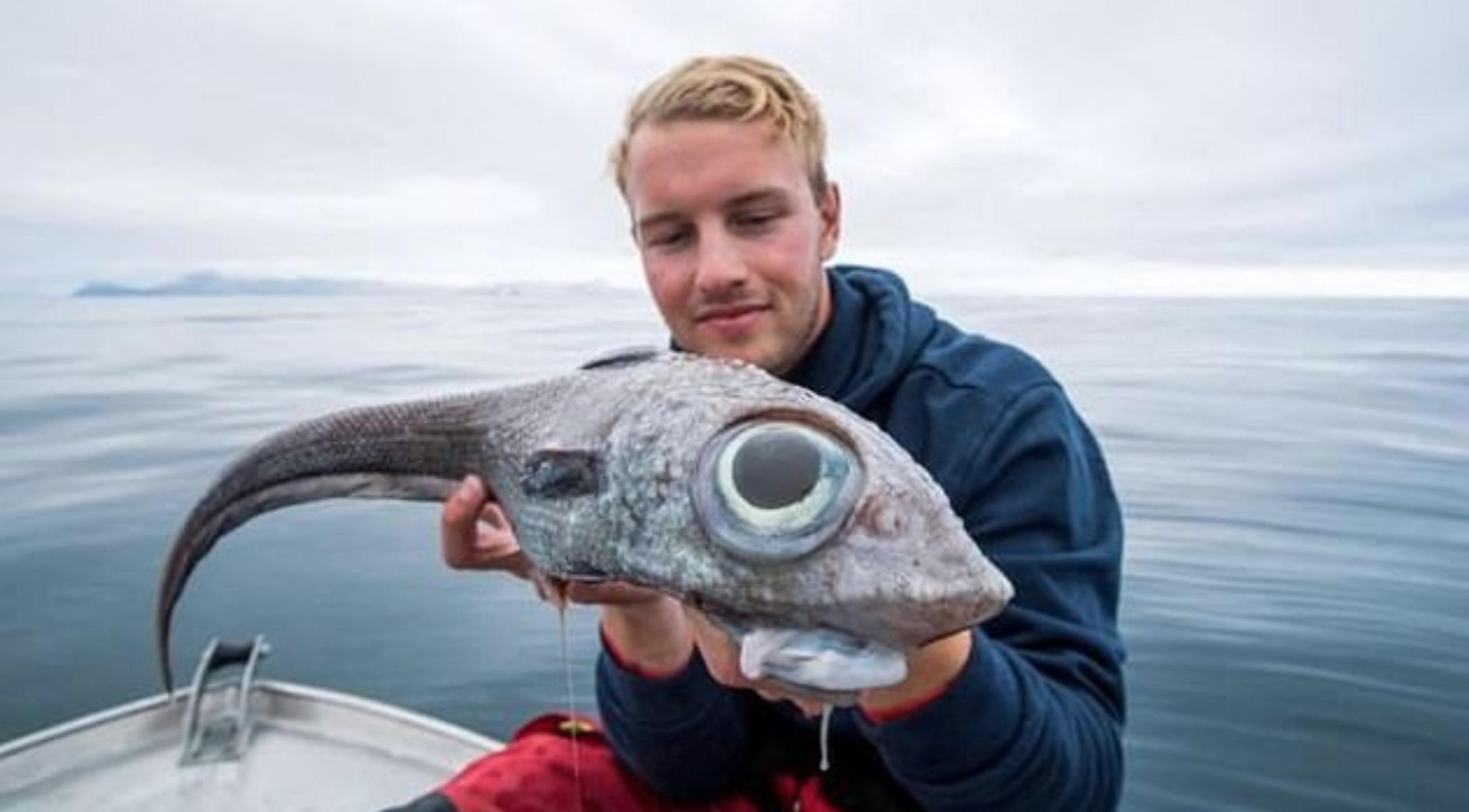 Το ψάρι με τα πελώρια μάτια που κάνει τον γύρο του κόσμου! [pic]