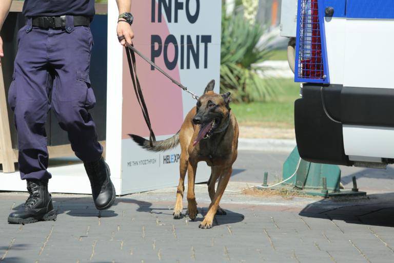 Θεσσαλονίκη: Ο αστυνομικός σκύλος «Ακύλας» ξετρύπωσε διακινητές ναρκωτικών