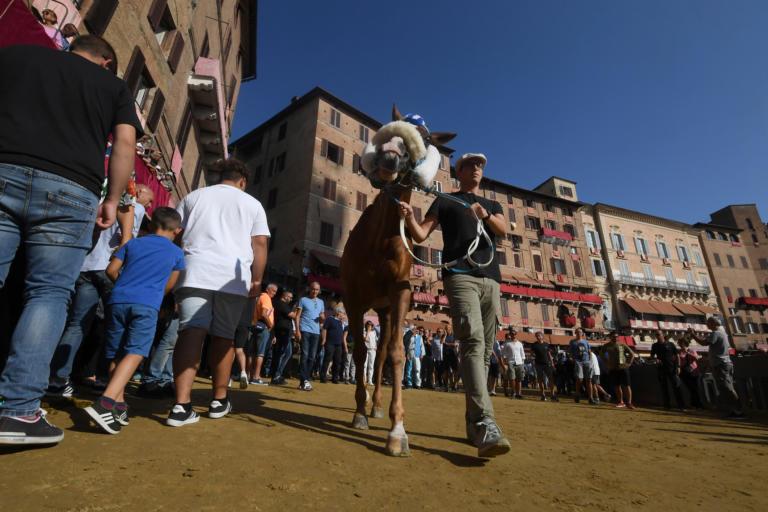 Ιταλία: Αυξάνονται στην Τοσκάνη τα κρούσματα της μόλυνσης από το «σούπερ βακτήριο NDM-1