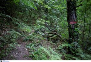Γιάννενα: Θρίλερ με την εξαφάνιση 26χρονου ορειβάτη – Στο κόκκινο η αγωνία του πατέρα του!