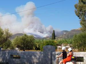 Φωτιά στη Ζάκυνθο: Νύχτα κόλαση! Δυο σπίτια παραδόθηκαν στις φλόγες